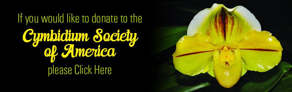 Donate to CSA